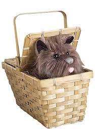 girls wizard of oz costume deluxe wizard of oz toto in a basket