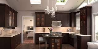 kitchen cabinets new brunswick kitchen 40 contemporary espresso kitchen cabinets ideas high