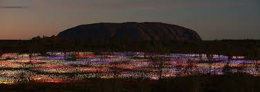 field of light uluru there s still time to see australia s field of light uluru