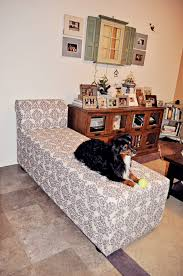 Diy Chaise Lounge Diy Storage Chaise Lounge A Boy A And 2 Mini Aussies