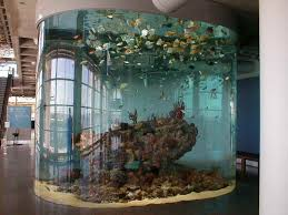 how to decorate fish tank designs ideas architectural cool fish