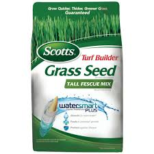 Home Depot Price by Fescue Grass Seed Lawn Care The Home Depot