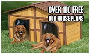 Why some People Almost Always Make Save Money with Custom Dog Kennels