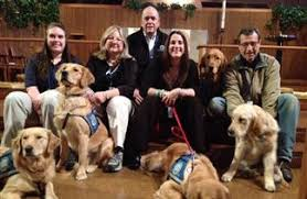 Comfort Golden Like Furry Counselors U0027 Comfort Dogs Deployed After Boston Bombings