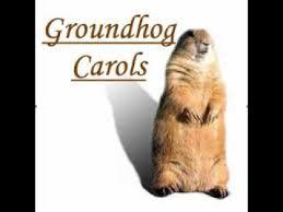 220 groundhog punxsutawney phil images