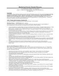 Marketing Executive Sample Resume by Sample Cv Sales And Marketing Manager