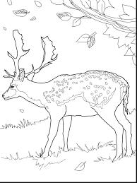 coloring pages john deere coloring pages john deere johnny