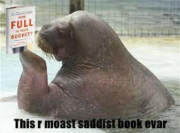 Walrus Meme - the complete walrus bucket saga 65 time for plan b i haz a