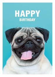 Pug Birthday Meme - happy birthday pug greeting card available at etsy com shop