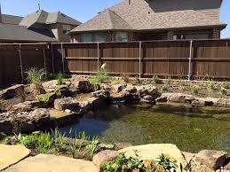 Backyard Swimming Ponds - landscape pond u0026 waterfall ideas for your backyard plano county