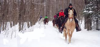Price Of Rides At Winter Winter Horseback Lake Placid Ny