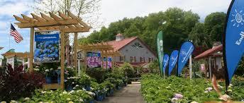 home van wilgen u0027s garden center