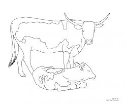 cows coloring pages cow picture of a cowboy hat animal cowgirl