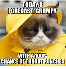 Throat Punch Meme - todays forecast grumpy with a 100 chance of throat punches grumpy