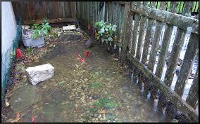 Weatherbug Backyard Rain Stephi Gardens