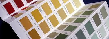 amazing paint colors for rental properties