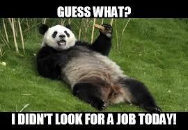 Panda Meme - unemployed panda pandas know your meme