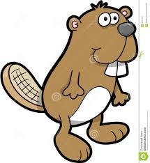 beaver vector illustration royalty free stock photo image 6651315