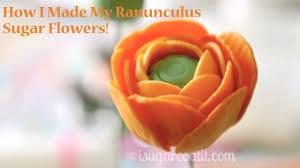 Ranunculus Flower Ranunculus Flower Tutorial Youtube