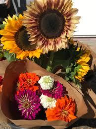 farm fresh flowers flowers galore eddy farm