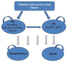 more use of peritoneal dialysis gives significant savings a