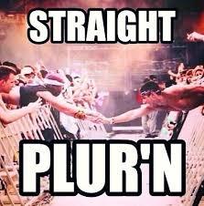 Edm Memes - 49 best funny edm memes images on pinterest music edm festival