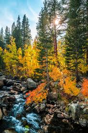 sony a7r2 california fall colors autumn foilage fine art u2026 flickr
