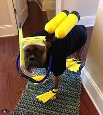 Batman Robin Dog Halloween Costumes Scuba Diver Costume Halloween Costume Contest Costume Contest