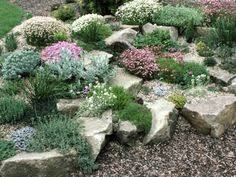 Small Garden Rockery Ideas Rock Garden Ideas Plants