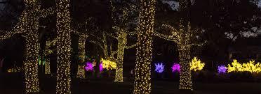 How To Hang Christmas Lights In Room Cheekwood Estate U0026 Gardens Nashville Tennesseecheekwood Estate