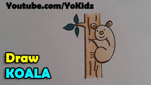 how to draw a koala cartoon youtube