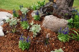 flower garden ideas for small yards decorating clear
