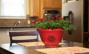 Decorative Indoor Planters Pots Planters U0026 Containers Southern Patio