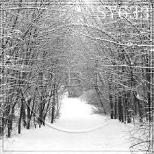 Christmas Photo Backdrops Christmas Winter Outdoor Snow 10x10 Ft Cp Photo Scenic Background