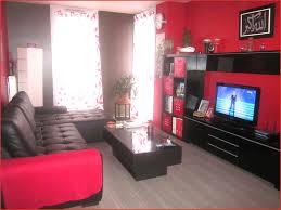 couleur canapé canapé couleur 53297 peinture salon avec couleur conseils et
