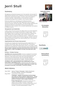 beautiful looking senior project manager resume 12 it manager