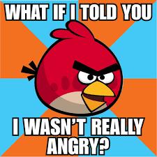 Angry Meme - tmnt mario angry birds memes