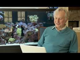 Richard Dawkins Theory Of Memes - richard dawkins know your meme
