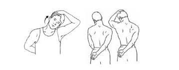 Neck Exercises At Desk 6 Exercises For Desk Related Shoulder U0026 Neck Pain Alliance Wellness