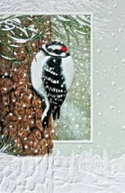 pumpernickel press cards christmas cards woodpecker pumpernickel press made in the