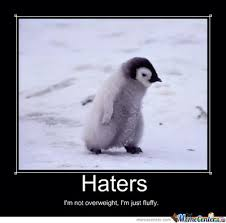Penguin Memes - penguin haters meme by amylovespenguins on deviantart