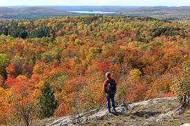9 hiking trails algonquin provincial park planetware