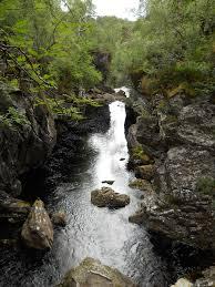 lady glen affric dog falls in glen affric my travels pinterest scotland
