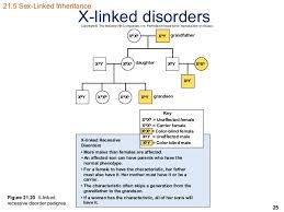 Does Colour Blindness Affect Males Or Females More Ss Inherited Conditions And Diseases Ch 21