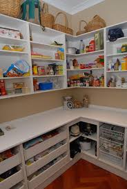 Pantry Shelving Ideas by 31 Best Kitchen Scullery Images On Pinterest Pantry Storage