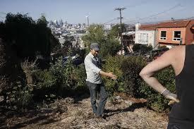 Urban Gardens San Francisco - property tax breaks aim to help urban farms crop up sfgate