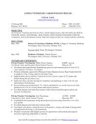 veterinary resume templates free resume example and writing download