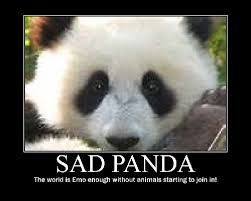 Sad Animal Memes - 20 crazy adorable sad panda memes sayingimages com