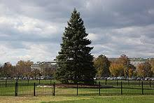 list of sources of the national christmas tree united states