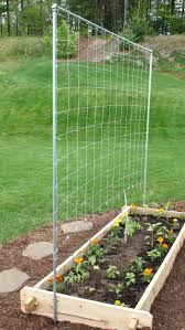 how to build a simple trellis for a tomato and vegetable garden